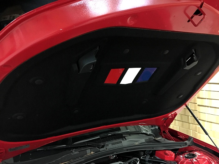 Red White And Blue Under Hood Plates For 6th Generation